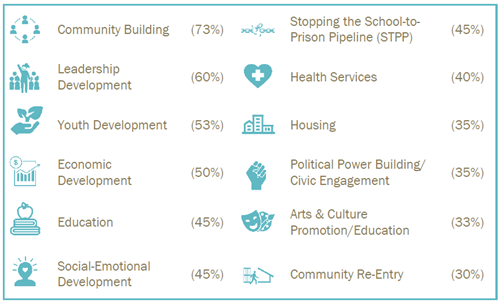 a diverse array of issues tackled by black-led organizations, as shown in icons & percentages