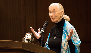 Jane Goodall speaking