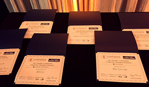 Corporate Champion Award Certificates